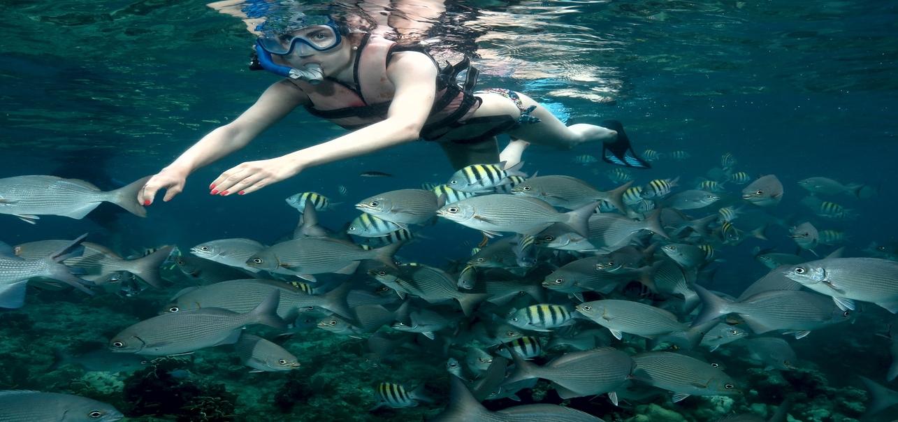snorkeling varadero
