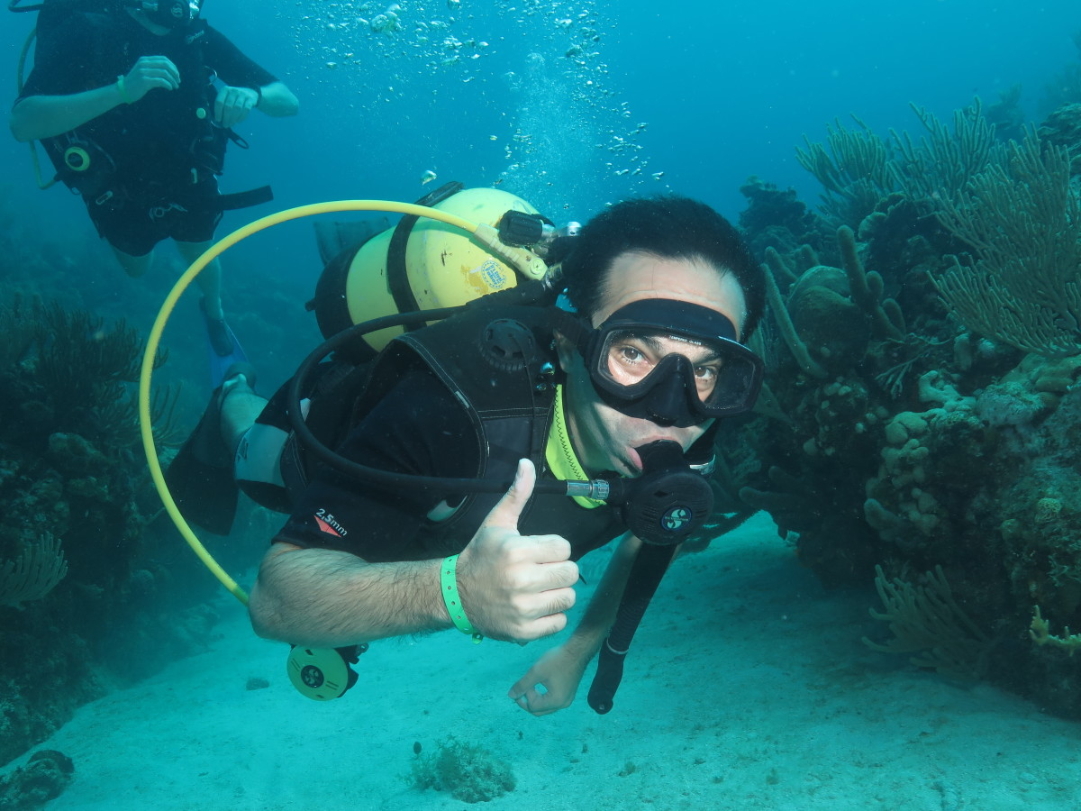 Best scuba diving varadero scuba diving varadero - Dive in scuba ...